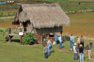 Heifer-Ranch-by-AR-Tourism