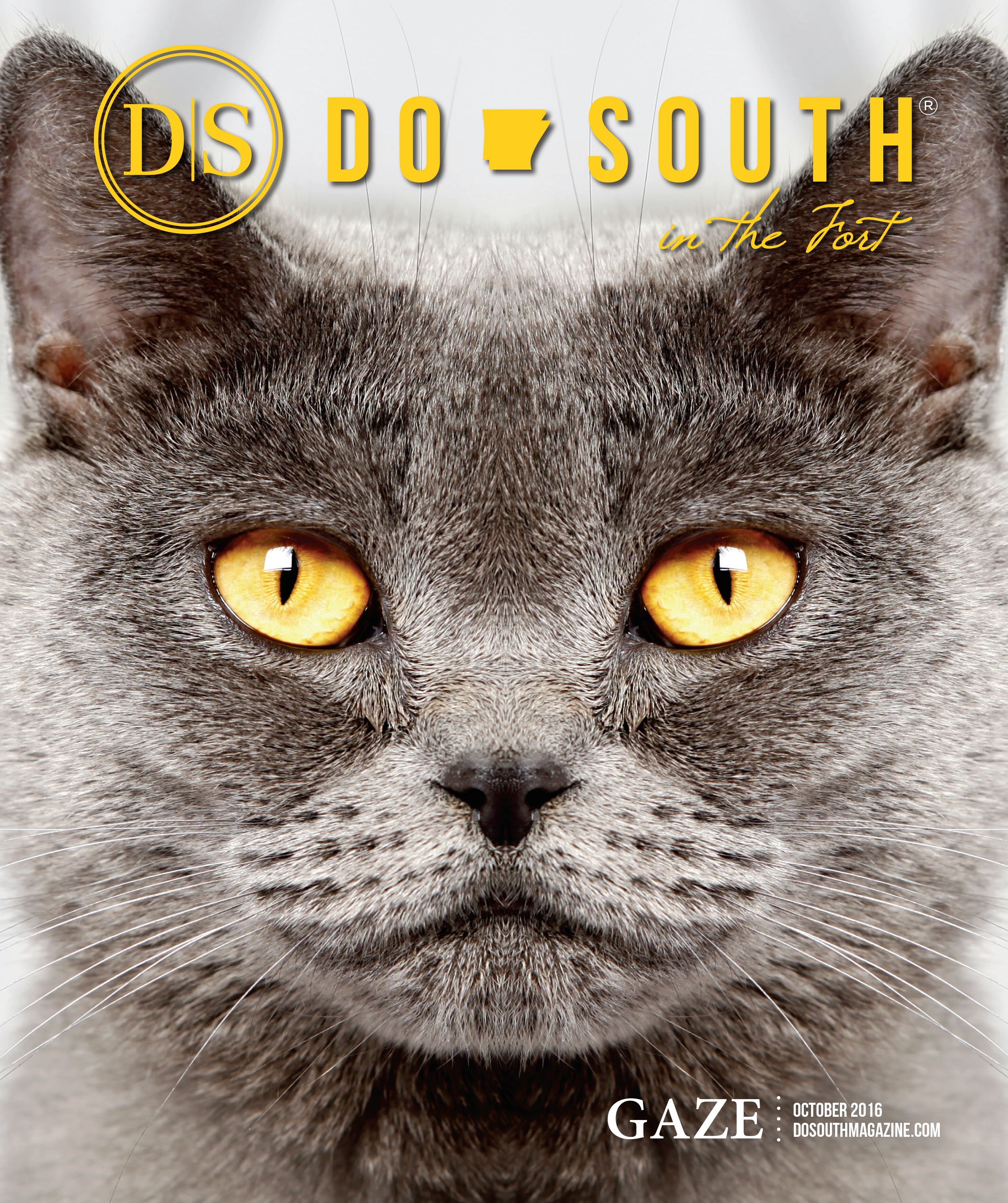 DoSouthGuideJune(cover)